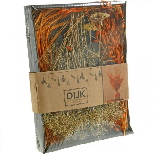 Trockenblumen Box Orange Trockenfloristik Set