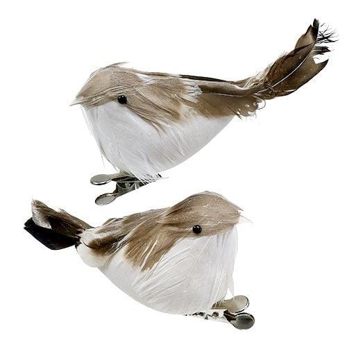 Vogel am Clip Weiß, Braun 12cm 2St