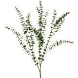 Eukalyptuszweig Grün 130cm