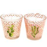 Wachskerze im Glas Kaktus Ø6,5cm 2St