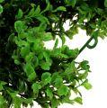 Buchsbaum Girlande Grün L170cm