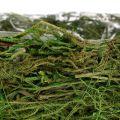 Schale mit Moos Ø22cm H10cm - 10,5cm Grün 3St