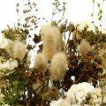 Trockenblumenstrauß mit Wiesengräsern Weiß, Grün, Braun 125g Trockenfloristik